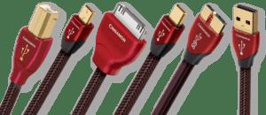 Day tin hieu USB AudioQuest Cinnamon